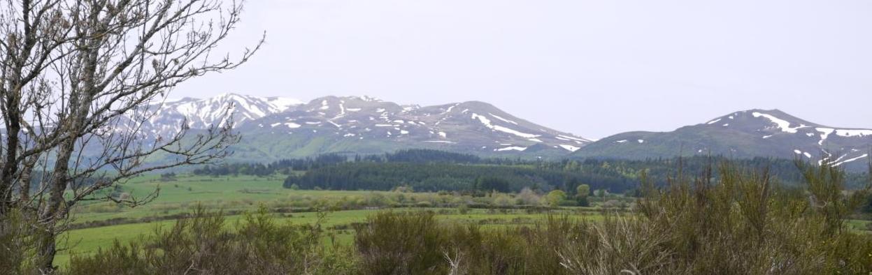Panorama puy de sancy