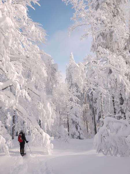 neige photo paysage
